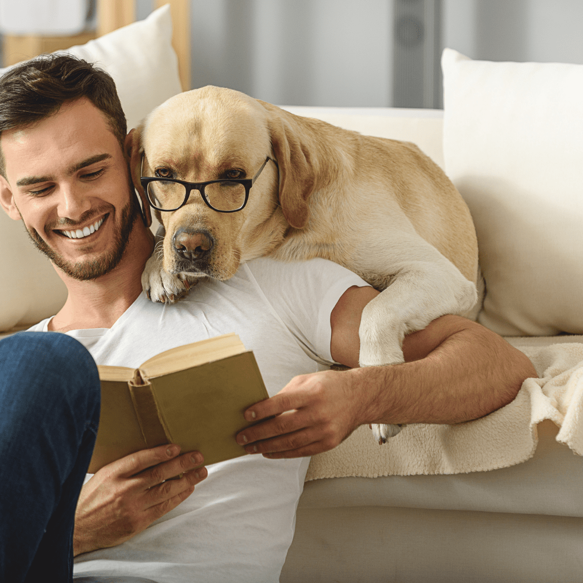 Dog reading with glasses