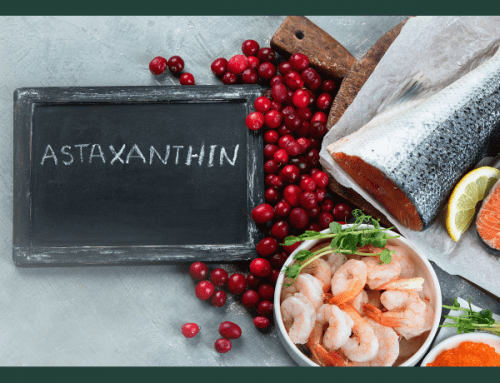 Astaxanthin Supports the Health of Your Pet